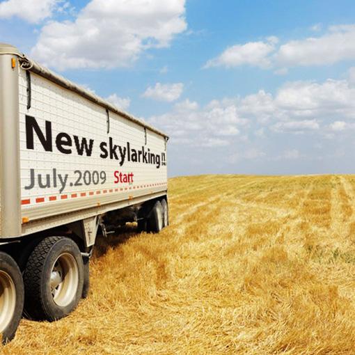new-skylarking.jpg